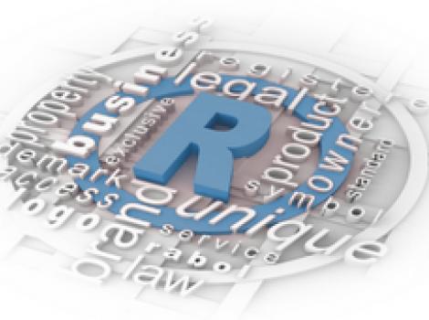 Основы законодательства в сфере защиты товарных знаков